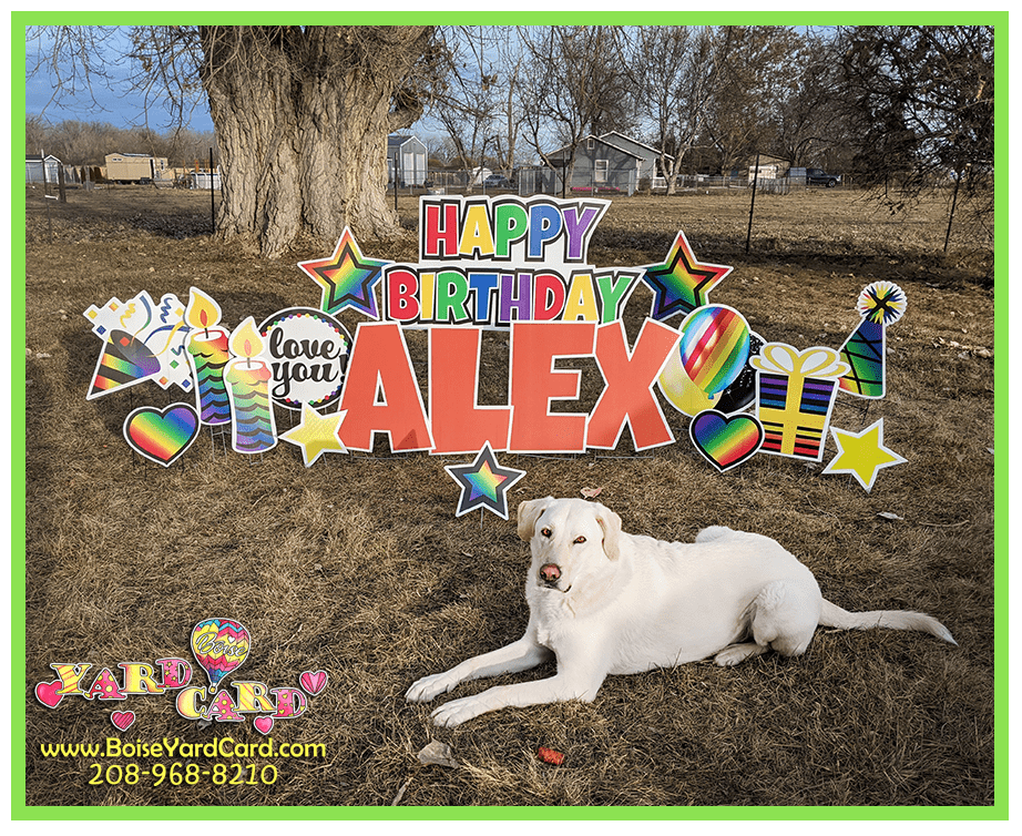 Happy Birthday lawn sign yard sign colorful